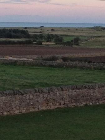 Springwood: view from Bamburgh room