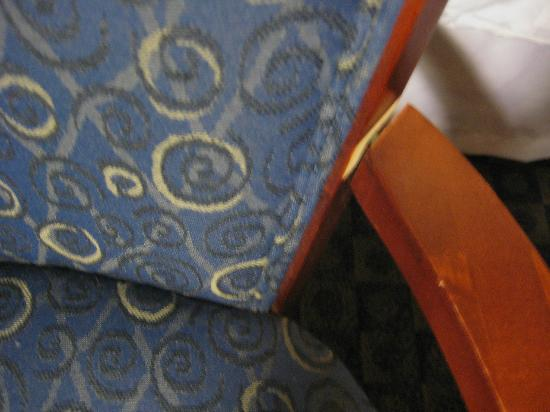 Four Points by Sheraton Tucson Airport: Chair Broken