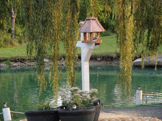 The Deer Watch Inn: Pond and Bird House