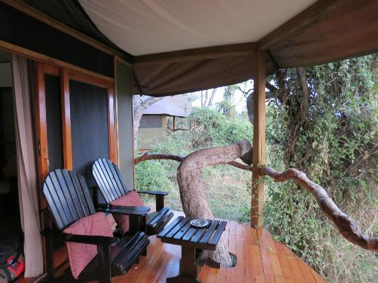 Kanana Camp: Balcony built around the trees