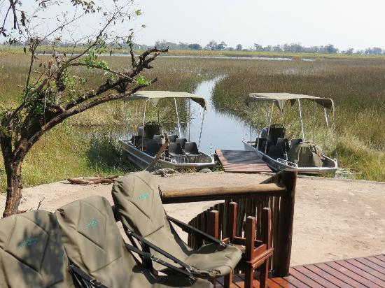 Kanana Camp: View from the lounge of the boats into the delta