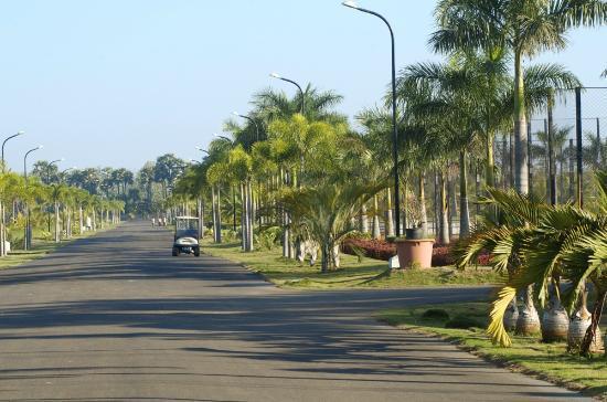 Sunray Village Resort: Avenue2
