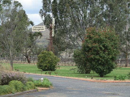 Farmer's Daughter Wines: Gardne view