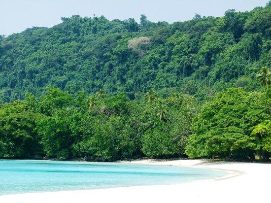 Espiritu Santo, Vanuatu: Champagne Beach