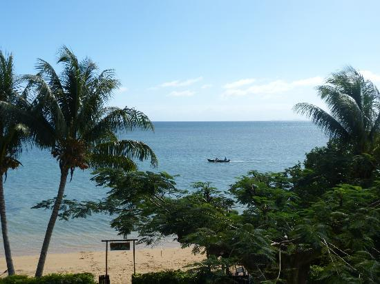 Coconut Grove Beachfront Cottages: View from Restaurant at breakfast