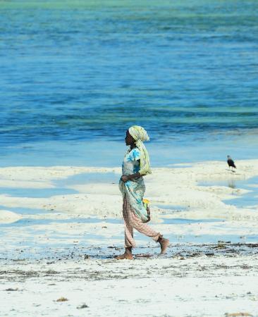 Bellevue Guesthouse: Lady on Bellevue beach