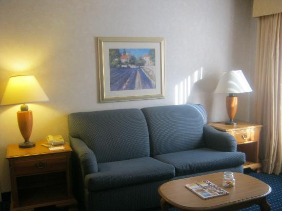 Residence Inn Rochester West/Greece: Living Room of Suite
