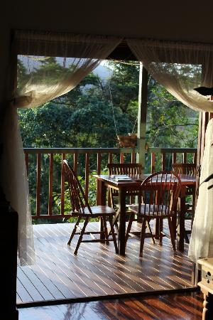 Mossman Gorge Bed and Breakfast: Serenity