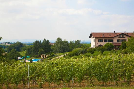 Cascina Papa Mora: la cascina papa mora vista dalle vigne 