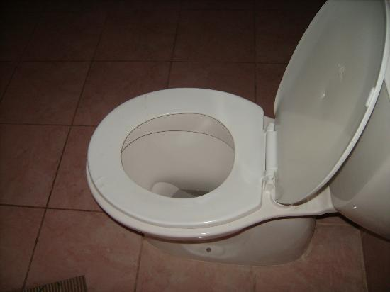 Villa Ozalp: toilet seat marked by cleaning fluid