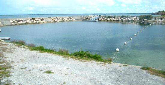 Kangaroo Island Seaview Motel: Tidal swimming pool
