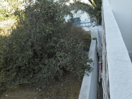 Margarita Hotel: Vista panorama