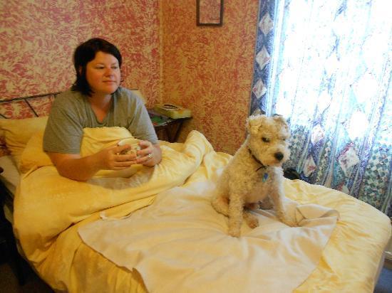 Ravenstar B&B: Comfortable twin en-suite - Pet Friendly