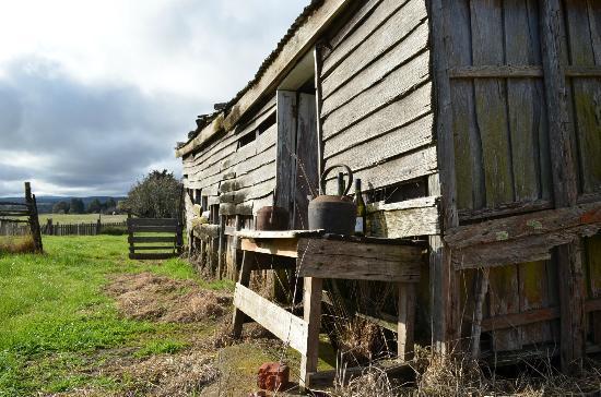 Gala Estate Vineyard: Rustic old shed at Gala Estate