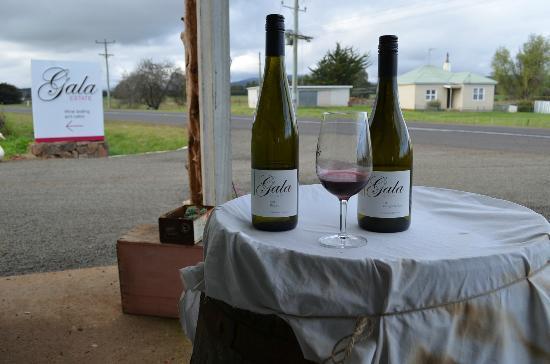 Gala Estate Vineyard: Display wines at the entrance