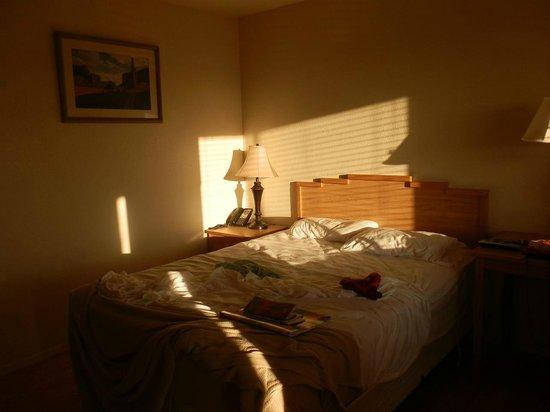 Photo of Dine Inn Motel Tuba City