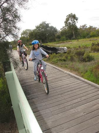 Fern Cove B&B: Push biking is free in the conservation park