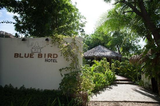 Blue Bird Hotel: The Door