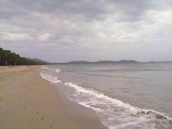 Camping Baia Verde: Vista spiaggia verso sud
