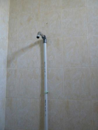 Pondok Satwa: Shower