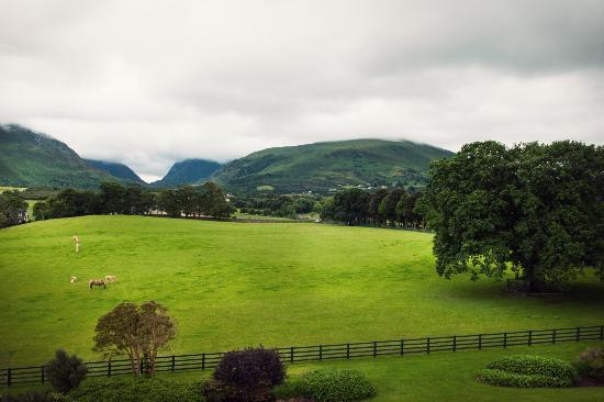 The Dunloe : Beautiful grounds and scenary
