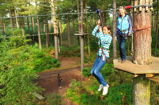 Goudhurst, UK: Go Ape Zip Wire