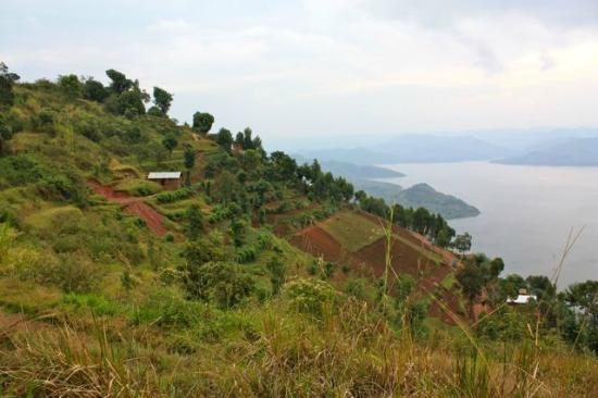 Virunga Lodge: View of terraces from lodge