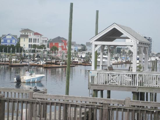 Harbor Masters : View from the Deck