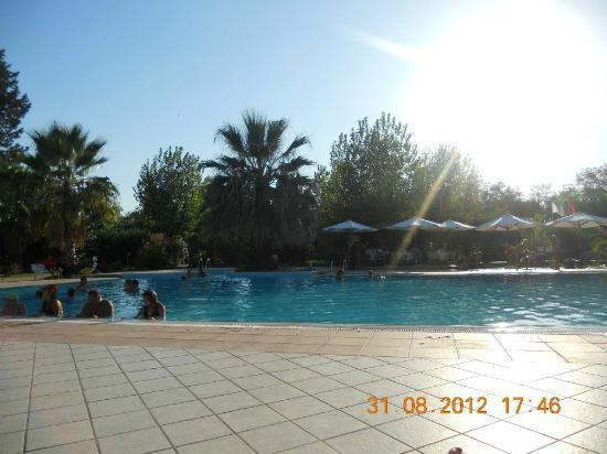 Calalandrusa Beach Resort: Piscina