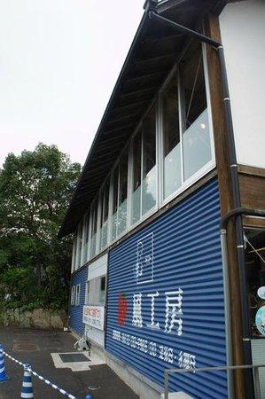 Kazekoubou: 店舗外観 