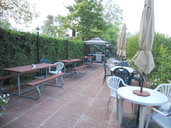 Blue Moon Motel: Barbecue, Leisure Area