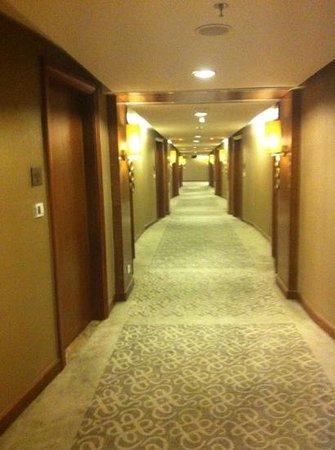 Aryaduta Medan: Hall way to the room