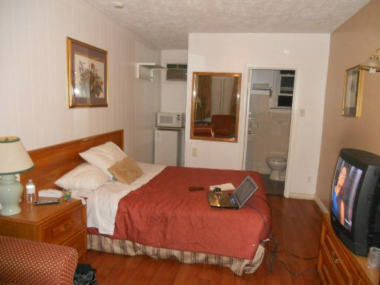 Park Motel: My Room