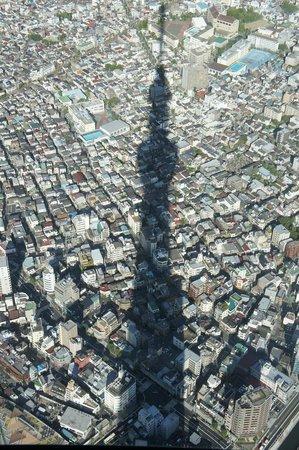 Sumida, Japan: スカイツリーの影