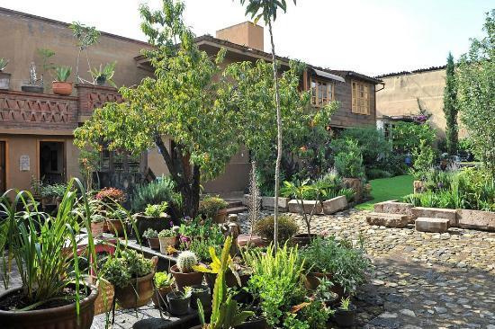 Villa Victoria: Back garden