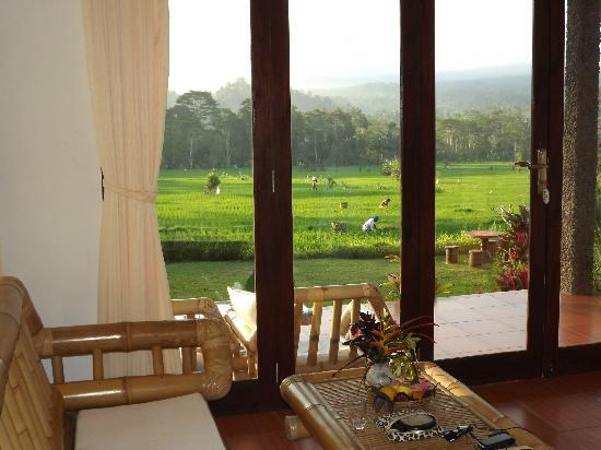 Great Mountain Views Villa Resort: Room with a view