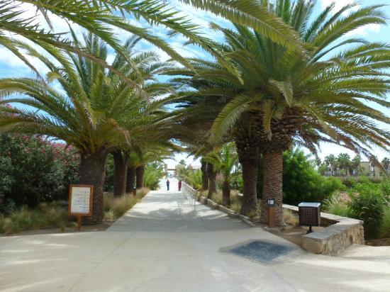Club Med Yasmina: Vers la plage