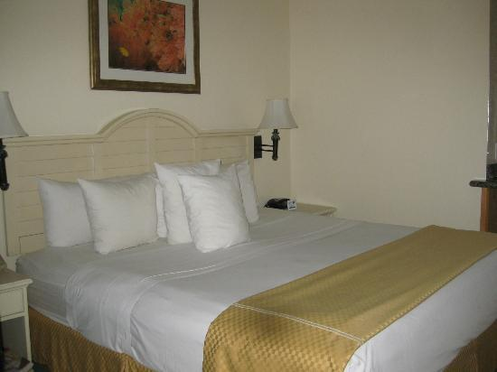 Comfort Suites Paradise Island: Typical room
