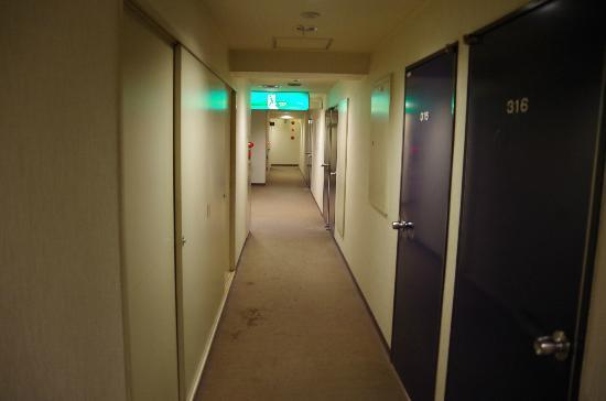 Hotel Hashimoto : 廊下
