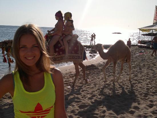 Ozkaymak Alaaddin: Пляж