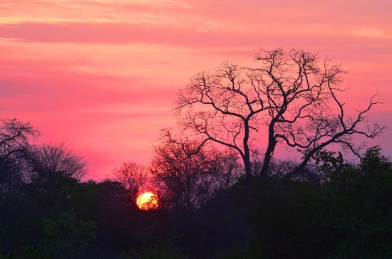 sunrise kafue national park