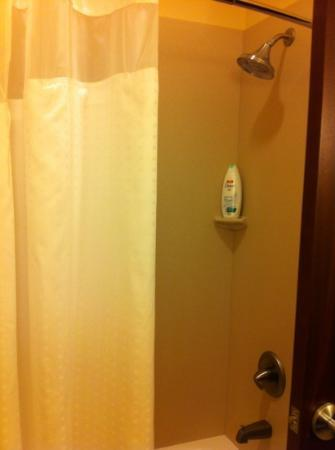 Holiday Inn Express & Suites Las Cruces North: bathroom