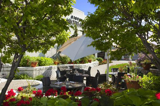 Restaurant Michelangelo: Intimate and sunny terrace