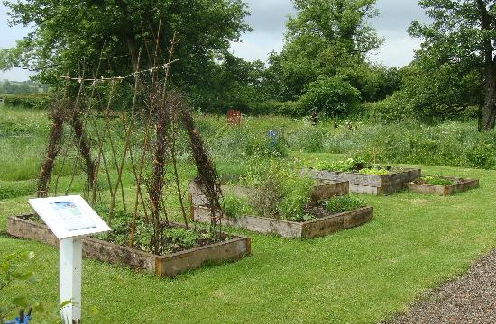 The Dutch House : The vegetable patch