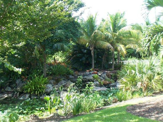 Mounts Botanical Garden View