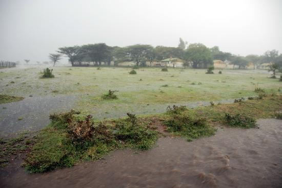 Sarova Mara Game Camp: there could be rain, everything in nature was very green