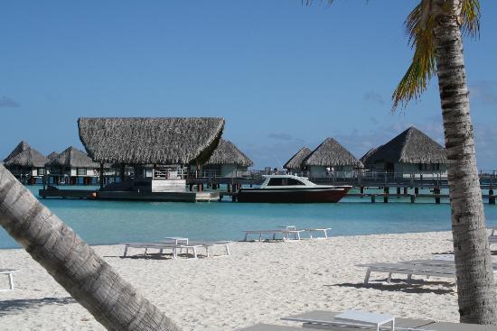 Le Meridien Bora Bora: Port