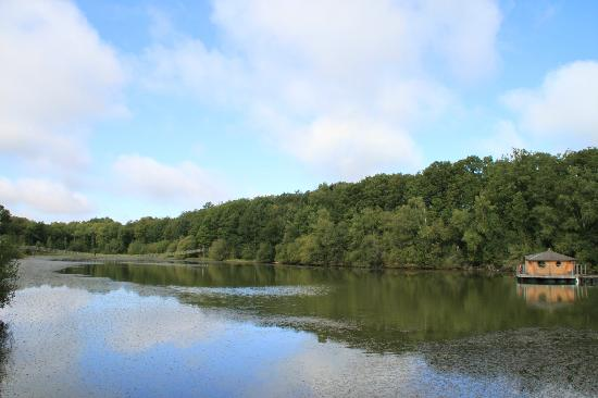 Les Cabanes du Bois Landry: Cabane vue sur le lac et le pont