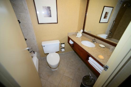Holiday Inn Lincoln - Downtown: Bathroom