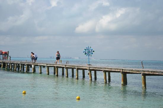 Captain Dulche's Museum: snorkeling